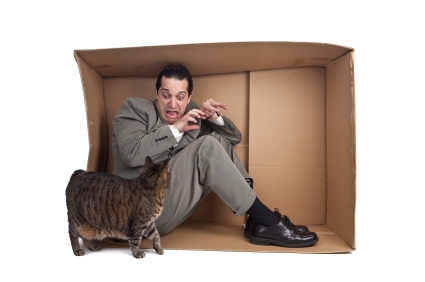 A man screaming as he hides in a box from a cat.