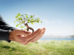 kebijakan-lingkungan